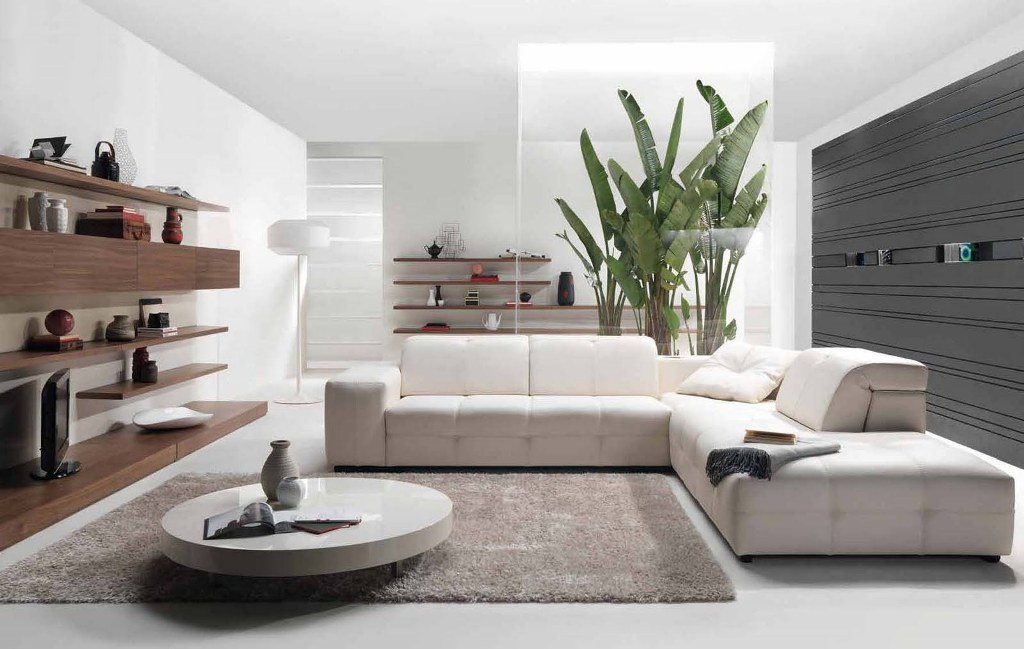 modern-living-room-ideas-image