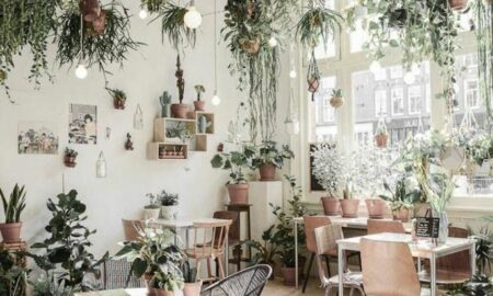 Indoor Plant Pots Decor