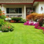 How to Maintain Your Garden
