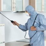 5 Reasons You Need Regular Pest Control