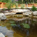 Benefits Of Ponds For Your New House